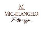Micaelangelo